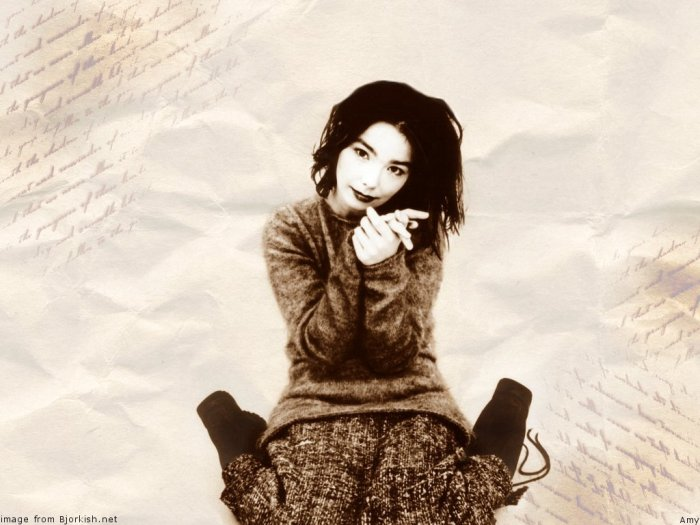 Congamag-Björk-1993