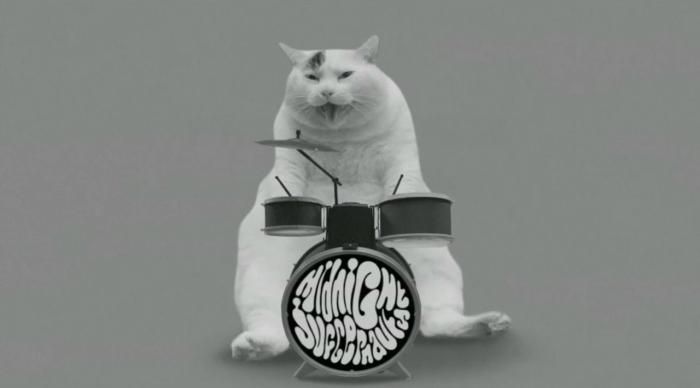 Congamag_Midnight Juggernauts y su gatito baterista